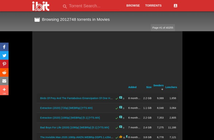 ibit.to torrent page