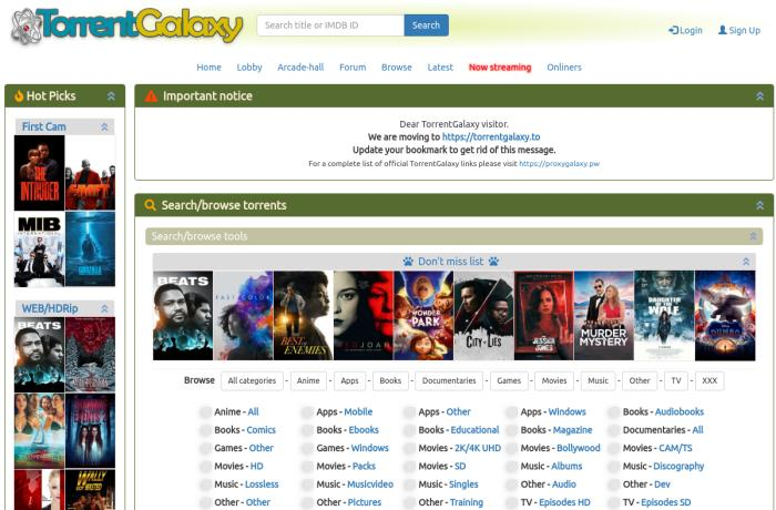 torrentgalaxy.to torrent page